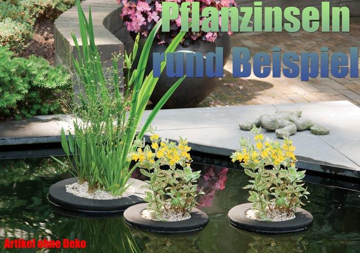 schwimmende-pflanzinsel-rund-garten-koi-teich-pflanzen-pflanzkorb-beispiel-schwimminsel-treibend