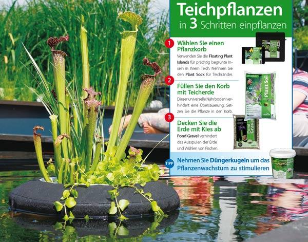 schwimmende-pflanzinsel-teich-velda-rund-eckig-teichpflanzen-einpflanzen-anleitung