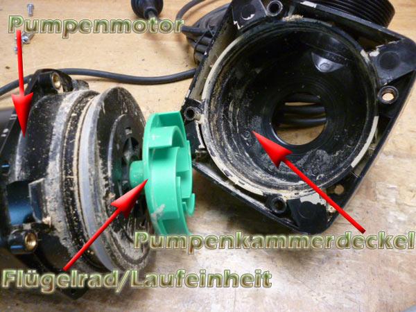 pumpenmotor-laufeinheit-deckel-entkalken-zerlegen-5