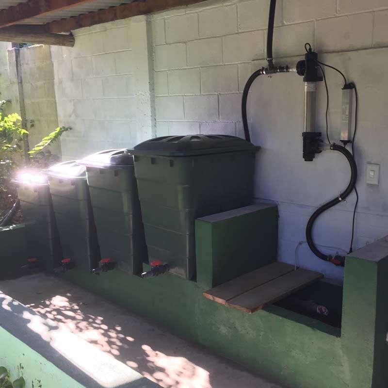 Teichfilter in brasilien mit 4 regentonnen f r 40000 liter for 1000 liter teich