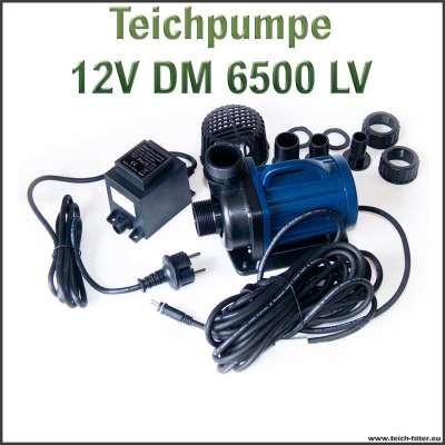 Teichpumpe 12V DM 6500 LV für Teichfilter bis 50000 Liter im Schwimmteich als Schwimmteichpumpe