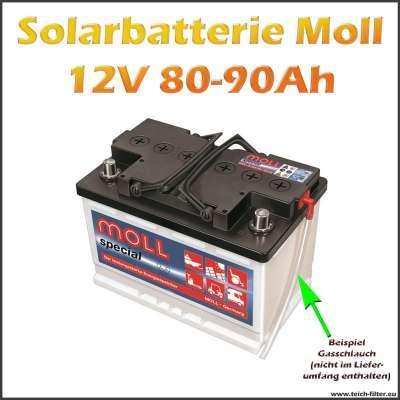 Moll Solarbatterie mit 80-90Ah Kapazität und 12V Spannung für Solar Inselanlagen im Haus und Garten