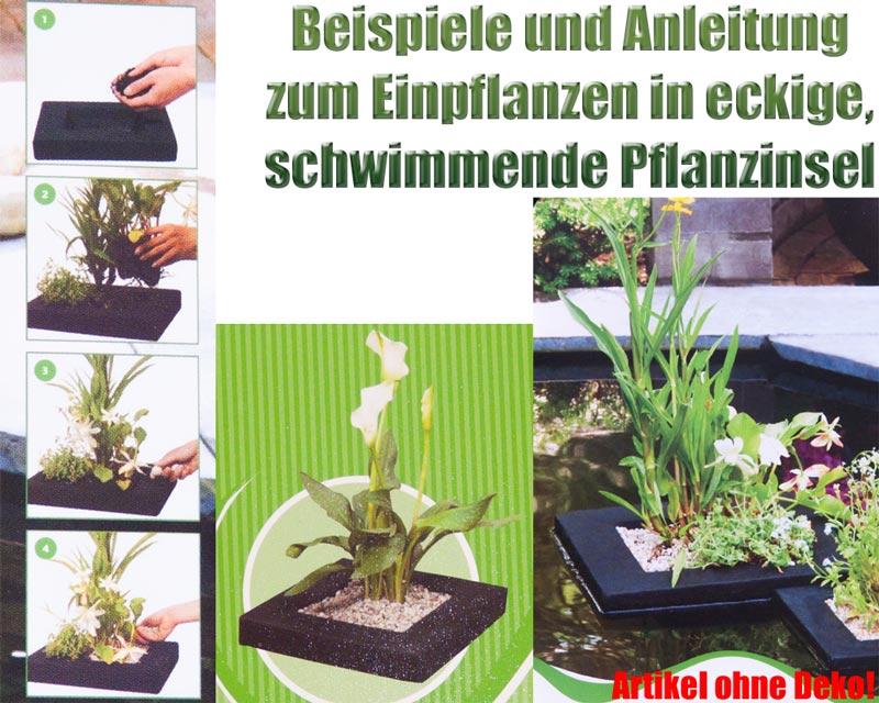 schwimmende-pflanzinsel-eckig-einpflanzen-teichpflanzen-teich-beispiel