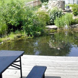 terrasse-ueber-den-teichrand