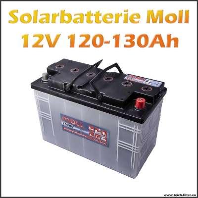 Zyklenfeste Moll Solarbatterie 12V mit 120-130Ah Kapazität für Garten und Camping