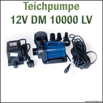 Teichpumpe 12V DM 10000 LV für IBC Teichfilter bis 300000 Liter im Schwimmteich als Tauchpumpe