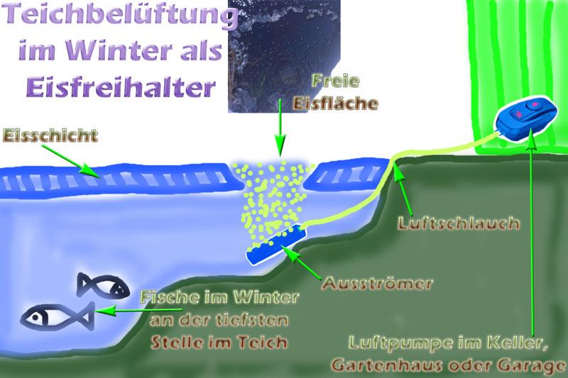 Teichbelueftung Wie Tief Im Winter Eisfreihalter