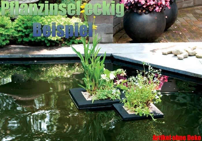 schwimmende-pflanzinsel-eckig-quadratisch-garten-koi-teich-pflanzen-pflanzkorb-schwimminsel