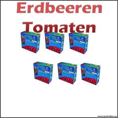 6 Pflanzampeln für Tomaten und Erdbeeren
