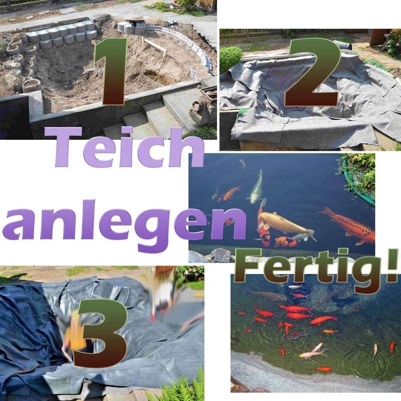 Teich Anlegen Und Selber Bauen