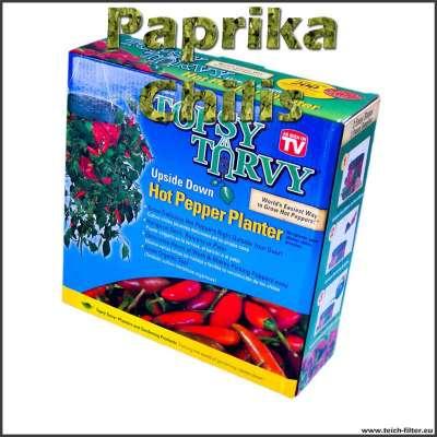Pflanzenampel für hängende Paprika und Chilis