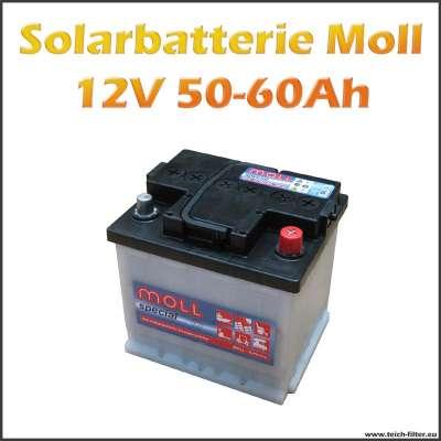50-60Ah Solarbatterie Moll für 12V Solar Inselanlagen im Garten und Wohnmobil