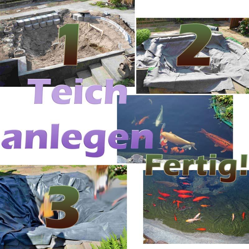 Teich anlegen und selber bauen mit bauanleitung teichbau for Teich fische ohne filter