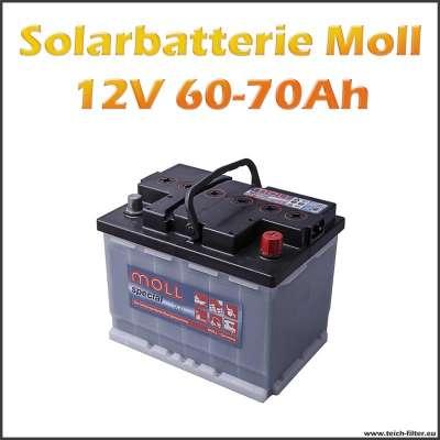 Moll Solar Batterie mit 60-70Ah und 12V Spannung für Inselanlagen