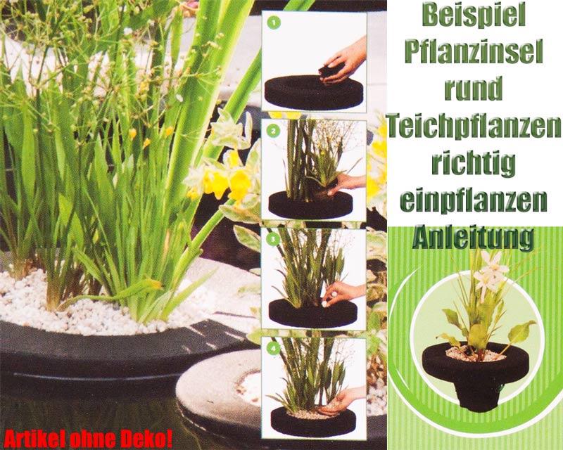 schwimmende-pflanzinsel-rund-einpflanzen-teichpflanzen-teich-beispiel-anleitung