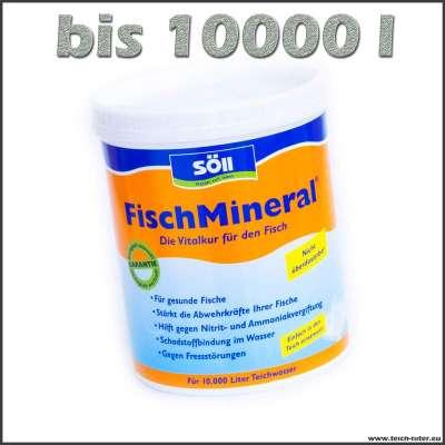 1 kg Söll Fisch Mineral zur Vorbeugung gegen Fischkrankheiten auf 10000 l Wasser