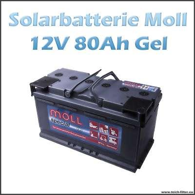 Moll Solarbatterie Gel 12V 80-90Ah für Haus und Wohnmobil