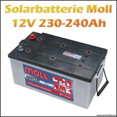Zyklenfeste 12V Solarbatterie 230-240Ah von Moll für Wohnmobil, Haus und Heim