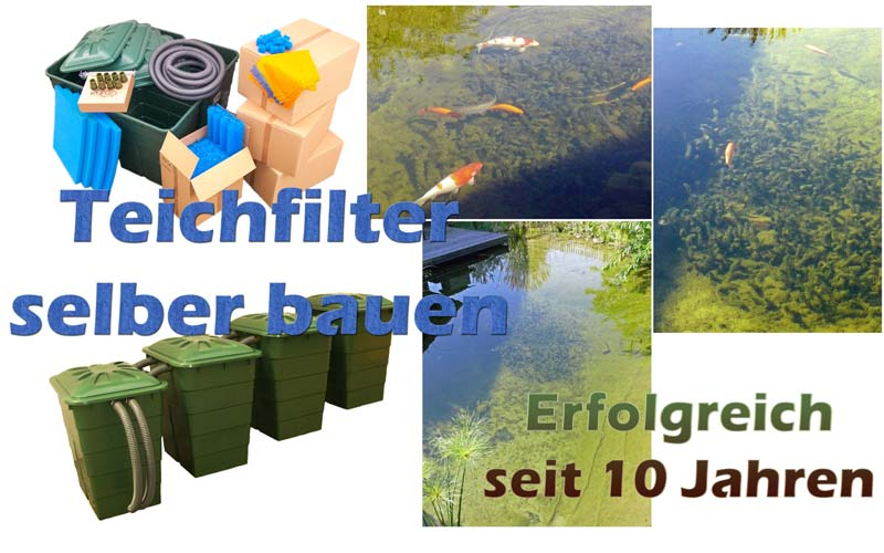 teichfilter-bauen-gegen-algen