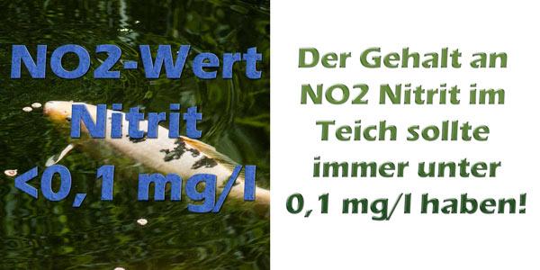 nitrit-no2-im-teich-grenzwerte