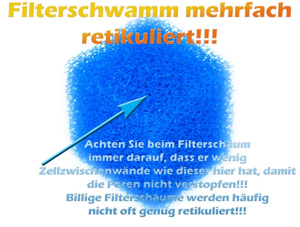 hochwertiger-filterschwamm-erkennungsmerkmale