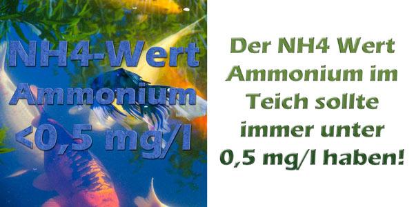 ammonium-nh4-im-teich-grenzwerte
