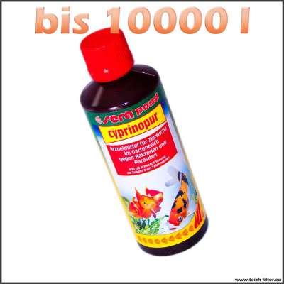500 ml Sera Cyprinopur gegen Parasiten und Viruserkrankungen auf 10000 l Teichwasser