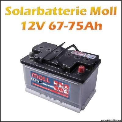 solarbatterie 67 75ah 12v moll f r photovoltaik teichfilter. Black Bedroom Furniture Sets. Home Design Ideas