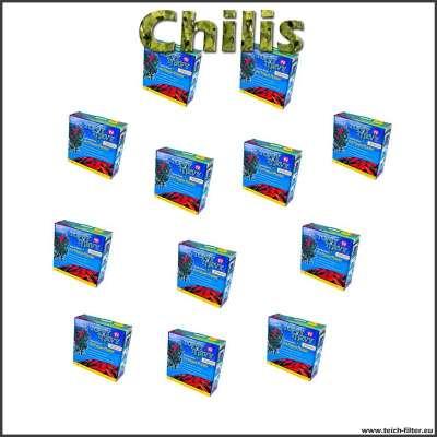 12 Pflanzenampeln für hängende Paprika und Chilis