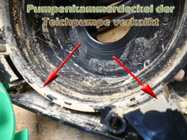 pumpenkammerdeckel-teichpumpe-verkalkt-4