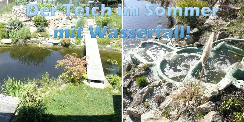 teich-im-sommer-mit-wasserfall